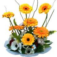 camda gerbera ve mis kokulu kir çiçekleri  Giresun hediye sevgilime hediye çiçek