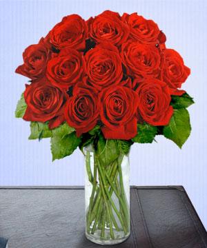 Anneme 12 adet cam içerisinde kirmizi gül  Giresun yurtiçi ve yurtdışı çiçek siparişi