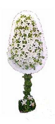 Giresun yurtiçi ve yurtdışı çiçek siparişi  nikah , dügün , açilis çiçek modeli  Giresun çiçek yolla