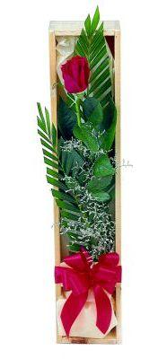 1 adet kutuda kirmizi gül  Giresun uluslararası çiçek gönderme