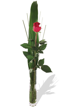 1 adet cam vazo içerisinde kirmizi gül  Giresun çiçek servisi , çiçekçi adresleri