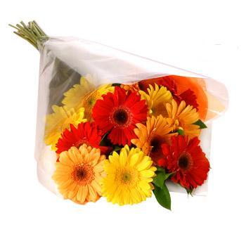 Karisik renklerde gerbera buketi  Giresun çiçekçi telefonları