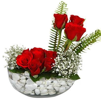 cam içerisinde 9 adet kirmizi gül  Giresun çiçek gönderme sitemiz güvenlidir