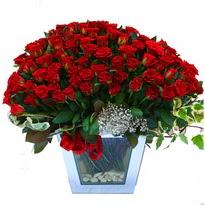 Giresun çiçek yolla , çiçek gönder , çiçekçi    101 adet kirmizi gül aranjmani