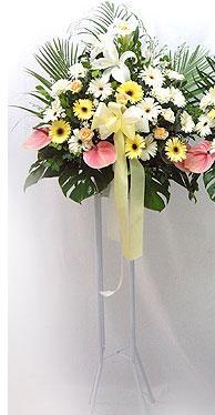 Giresun çiçek yolla   perförje çiçegi dügün çiçekleri
