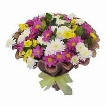 Giresun hediye sevgilime hediye çiçek  Mevsim kir çiçegi demeti