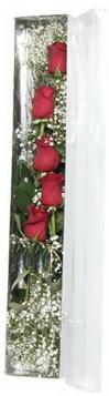 Giresun yurtiçi ve yurtdışı çiçek siparişi   5 adet gülden kutu güller