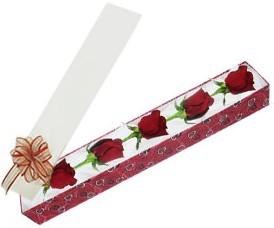 Giresun online çiçekçi , çiçek siparişi  kutu içerisinde 5 adet kirmizi gül