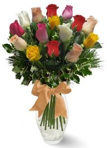 15 adet vazoda renkli gül  Giresun online çiçekçi , çiçek siparişi