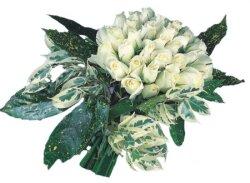 Giresun İnternetten çiçek siparişi  9 Beyaz gül Özel kisiler için