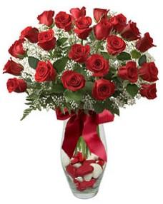 17 adet essiz kalitede kirmizi gül  Giresun internetten çiçek satışı