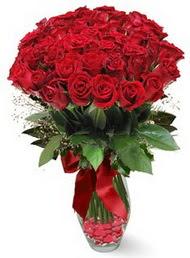 19 adet essiz kalitede kirmizi gül  Giresun çiçek , çiçekçi , çiçekçilik