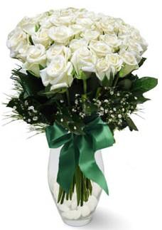 19 adet essiz kalitede beyaz gül  Giresun çiçek yolla , çiçek gönder , çiçekçi