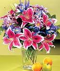 Giresun internetten çiçek satışı  Sevgi bahçesi Özel  bir tercih