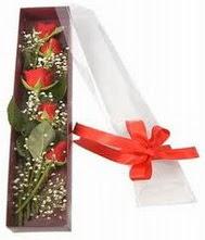 kutu içinde 5 adet kirmizi gül  Giresun İnternetten çiçek siparişi