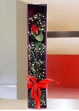 kutu içinde tek kirmizi gül  Giresun çiçekçi mağazası