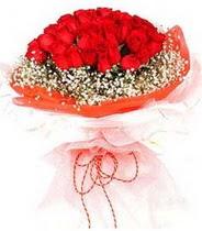 Giresun hediye çiçek yolla  21 adet askin kirmizi gül buketi