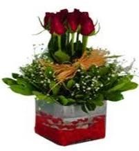 Giresun anneler günü çiçek yolla  7 adet mika yada cam vazoda gül tanzimi