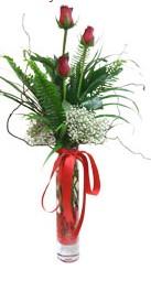 Giresun yurtiçi ve yurtdışı çiçek siparişi  3 adet kirmizi gül vazo içerisinde