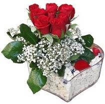 Giresun internetten çiçek siparişi  kalp mika içerisinde 7 adet kirmizi gül