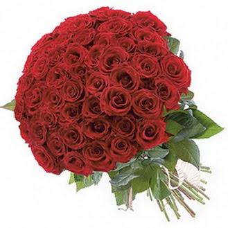Giresun internetten çiçek siparişi  101 adet kırmızı gül buketi modeli