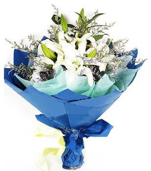 Giresun ucuz çiçek gönder  4 adet dal kazablankadan görsel buket