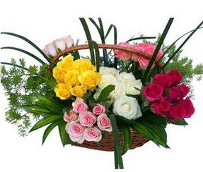 Giresun çiçek mağazası , çiçekçi adresleri  35 adet rengarenk güllerden sepet tanzimi