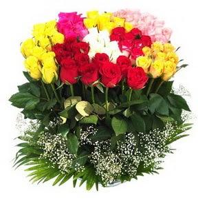 Giresun internetten çiçek satışı  51 adet renkli güllerden aranjman tanzimi