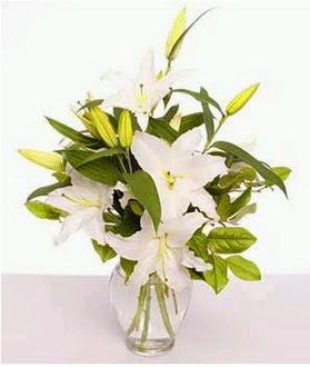 Giresun anneler günü çiçek yolla  2 dal cazablanca vazo çiçeği