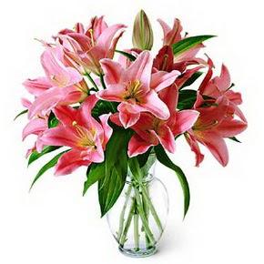 3 dal kazablanka görsel vazosu  Giresun İnternetten çiçek siparişi