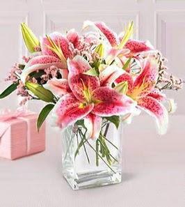 2 dal kazablanka görsel vazosu  Giresun yurtiçi ve yurtdışı çiçek siparişi