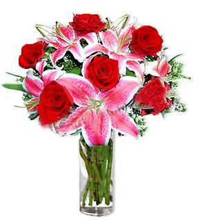 Giresun 14 şubat sevgililer günü çiçek  1 dal cazablanca ve 6 kırmızı gül çiçeği