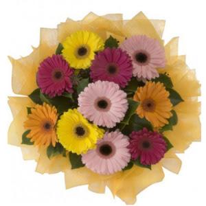Giresun cicekciler , cicek siparisi  11 adet karışık gerbera çiçeği buketi