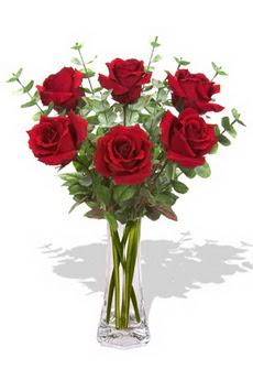 Giresun güvenli kaliteli hızlı çiçek  6 kırmızı gül vazosu