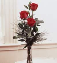 Giresun online çiçekçi , çiçek siparişi  Vazoda 3 adet güzel gül