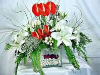 Giresun internetten çiçek satışı  Anthurim Kazablanka  gül