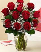 Sevgilime hediye 9 adet 1.ci kalite gül  Giresun ucuz çiçek gönder