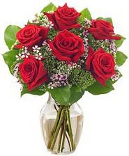 Kız arkadaşıma hediye 6 kırmızı gül  Giresun İnternetten çiçek siparişi