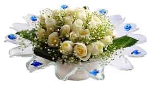 Giresun çiçekçi mağazası  11 adet Beyaz güller özel cam tanzim