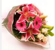 1 dal kazablanka ve mevsim çiçekleri  Giresun İnternetten çiçek siparişi