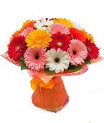 Renkli gerbera buketi  Giresun ucuz çiçek gönder