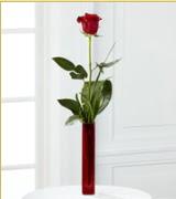 Vazo içerisinde 1 adet kırmızı gül  Giresun İnternetten çiçek siparişi