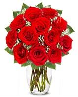12 adet vazoda kıpkırmızı gül  Giresun çiçek gönderme