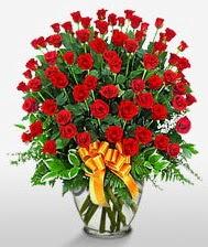 Görsel vazo içerisinde 101 adet gül  Giresun çiçek gönderme