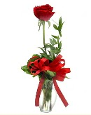 vazo içerisinde 1 adet kırmızı gül  Giresun hediye sevgilime hediye çiçek