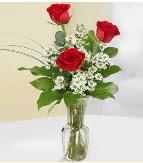 Vazo içerisinde 3 adet kırmızı gül  Giresun çiçek online çiçek siparişi