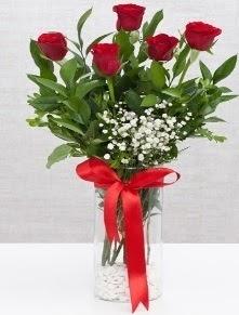 cam vazo içerisinde 5 adet kırmızı gül  Giresun çiçekçi telefonları