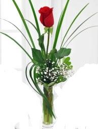 Cam içerisinde 1 kırmızı gül  Giresun uluslararası çiçek gönderme