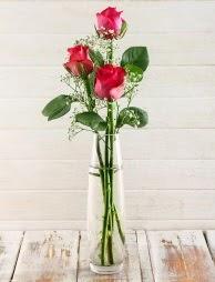Cam içerisinde 3 kırmızı gül  Giresun çiçek online çiçek siparişi