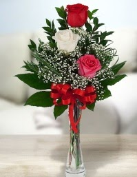 Camda 2 kırmızı 1 beyaz gül  Giresun çiçek mağazası , çiçekçi adresleri
